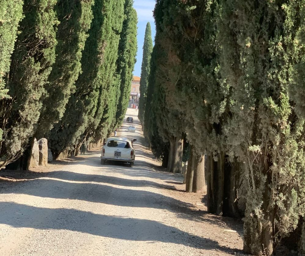 Allee-Einfahrt in Hotel Toskana